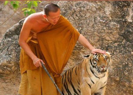 حیوانات و ادیان جهان