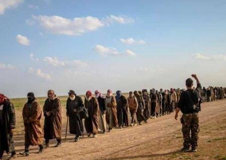 تحویل ۱۰۰ داعشی به عراق از سوی قسد